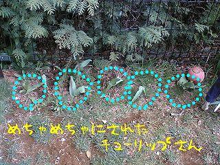TS310860_.jpg