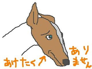 yuki060803.jpg
